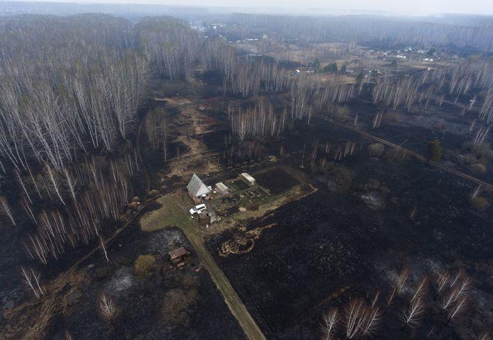 Un village du sud de la Sibérie noirci par un incendie parmi les centaines qui ont ...