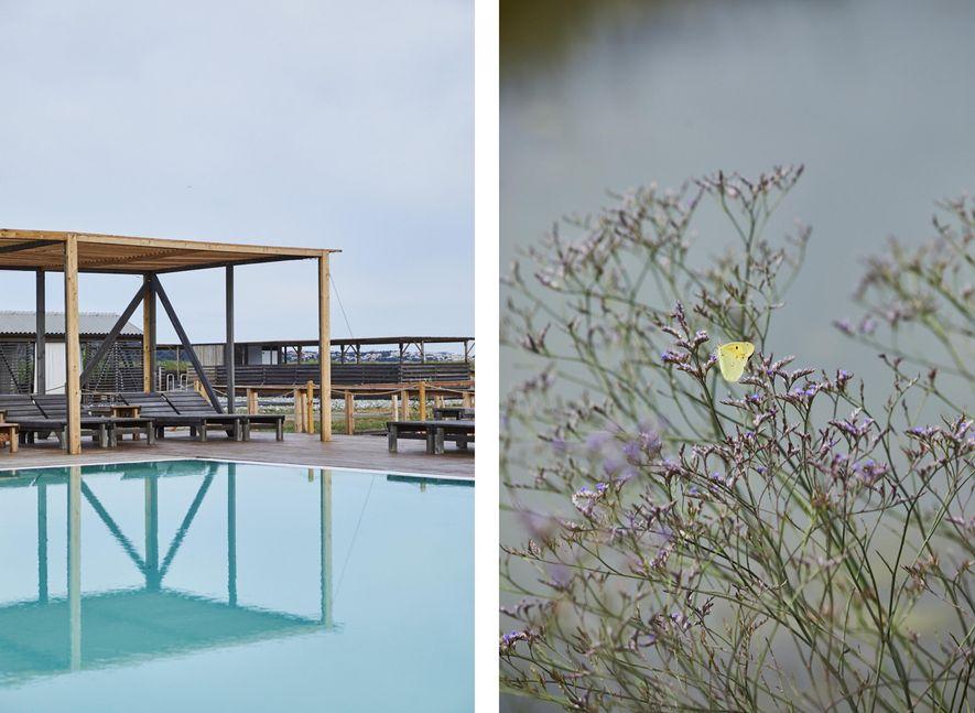Gauche : Les bassins d'eau salée du centre Lepa Vida. Droite : Le parc naturel des salines de Sečovlje bénéficie d'une flore et d'une faune extraordinaires.