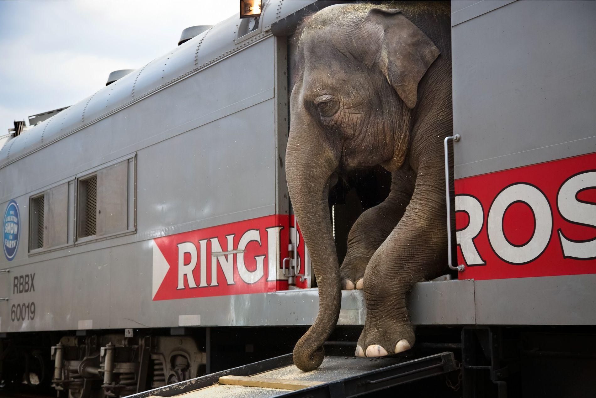 sinclair-ringling-circus01