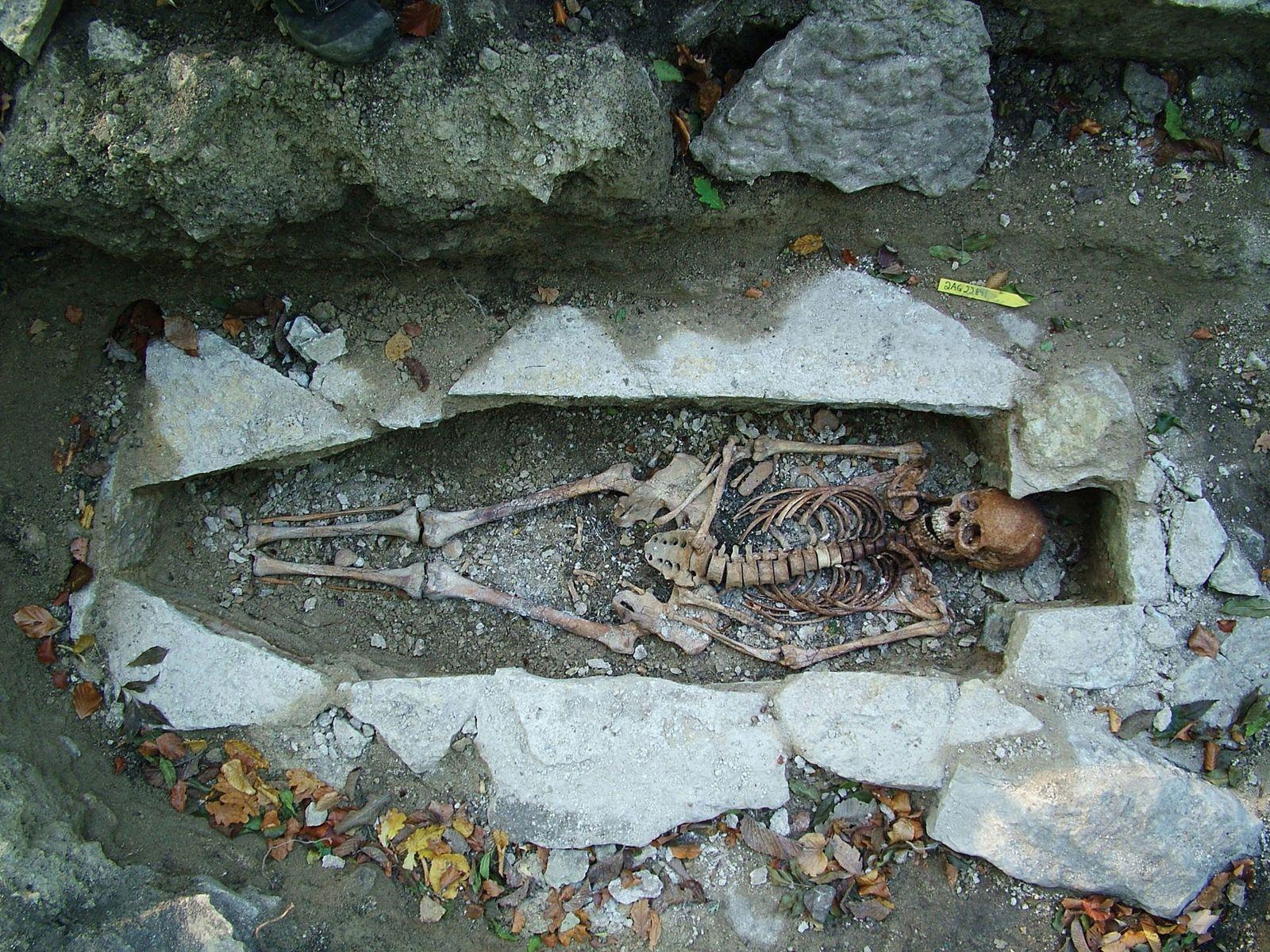 Les grandes découvertes archéologiques de l'année 2020 - cover