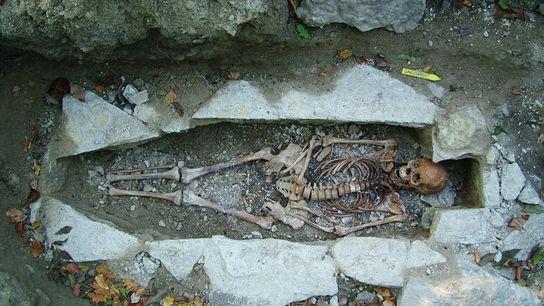 L'ADN d'un squelette féminin nommé Kata, trouvé sur un site funéraire viking à Varnhem, en Suède, ...