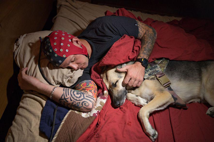 Un vétéran de la guerre d'Irak porte un casque électroencéphalographique tandis qu'il dort avec Olive, son ...