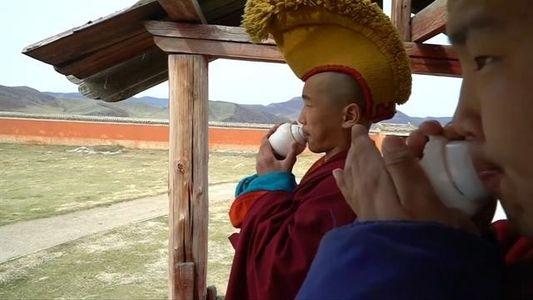 Ces millenials se font moines et adaptent les traditions bouddhistes à un monde en changement