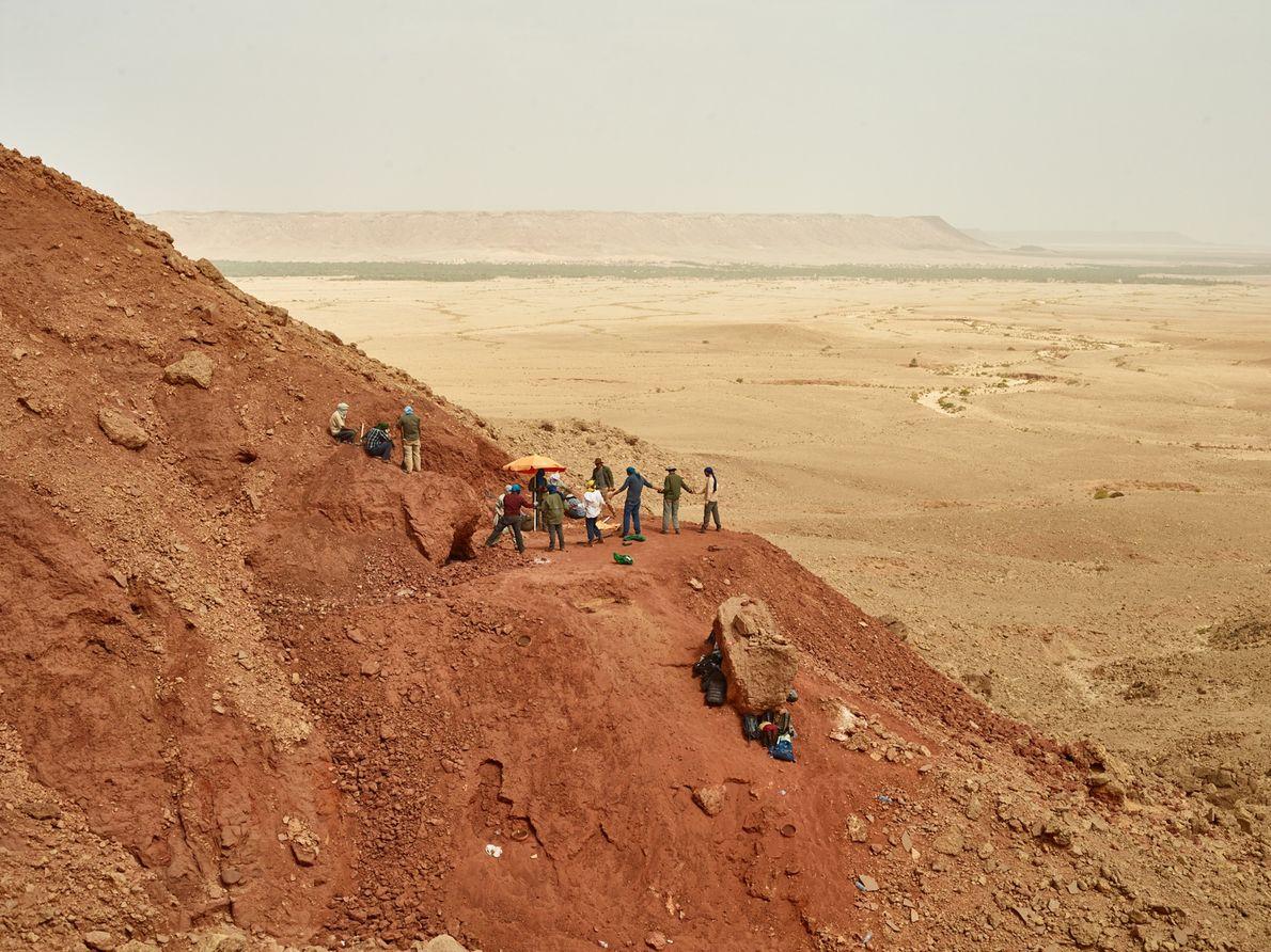 Menant des fouilles pendant de longues heures sous un soleil de plomb, les chercheurs gardent leurs ...