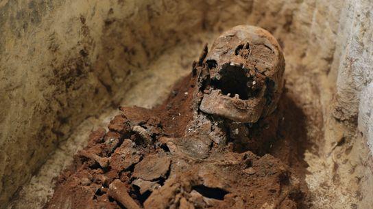 Le squelette momifié de Tadihor, une femme de haut rang, a été bien conservé durant plus ...