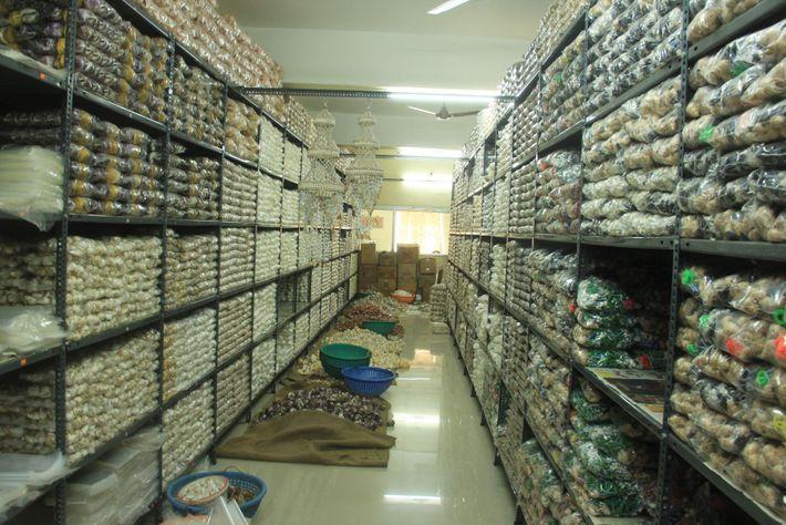 Une fois nettoyés et polis, les coquillages stockés dans cet entrepôt situé en Inde sont prêts ...