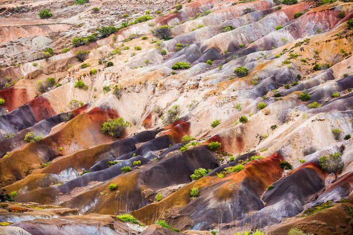 Les sols colorés spectaculaires de la Fisher's Valley témoignent des origines volcaniques de l'île Sainte-Hélène.