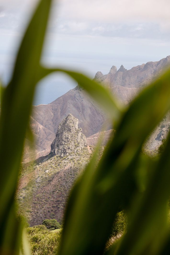 De spectaculaires paysages rocheux attirent les randonneurs vers l'île de Sainte-Hélène.