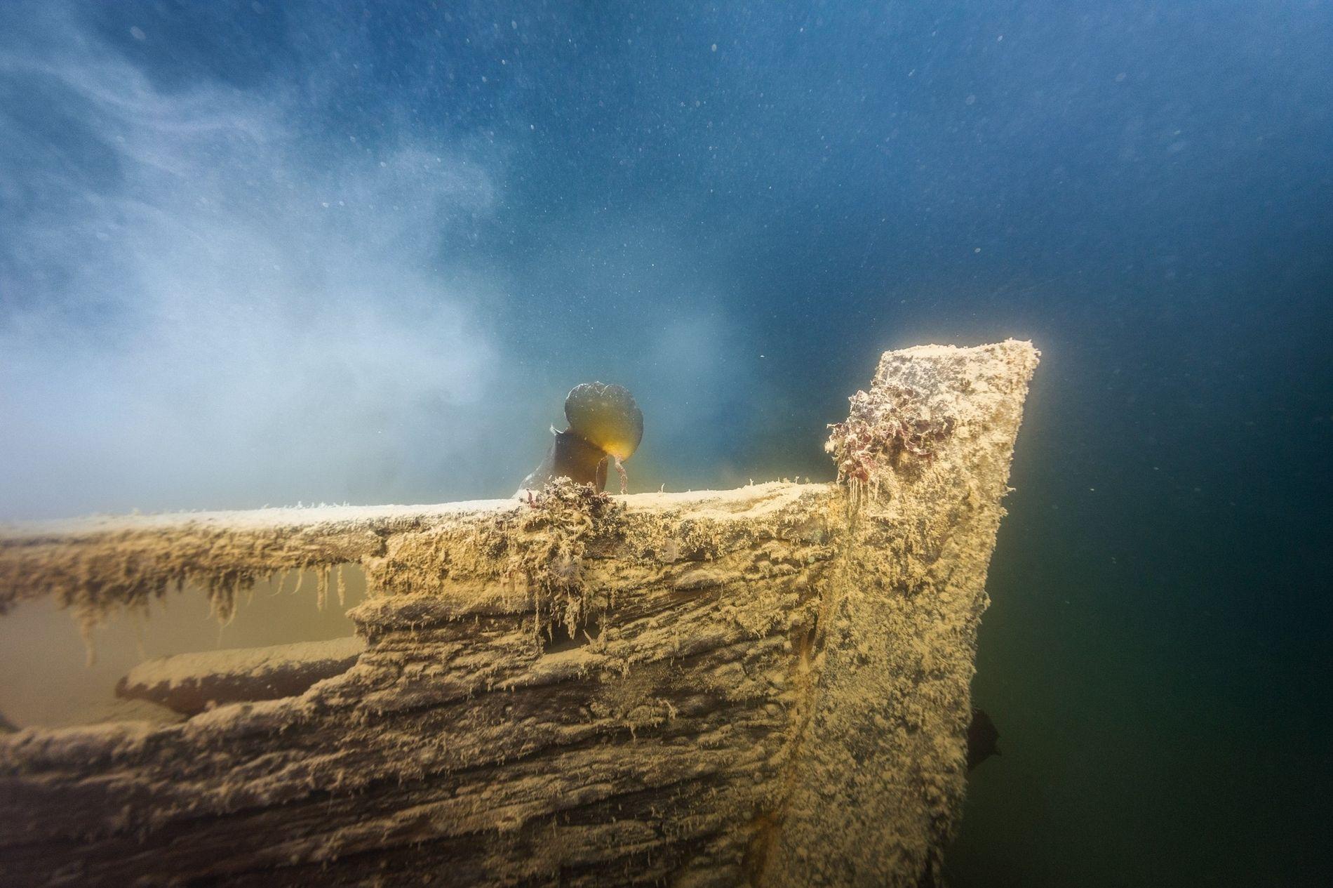 Le H.M.S Terror est l'un des deux navires de la funeste expédition Franklin ; il a été découvert en 2016 au large de l'île du roi Guillaume dans l'Arctique canadien. Le petit bateau d'expédition photographié ci-dessus a sombré aux côtés du Terror et repose sur le plancher océanique à proximité du navire.