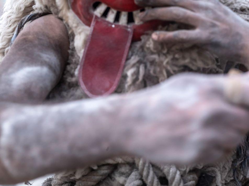 En Slovénie, les monstres reviennent à la vie