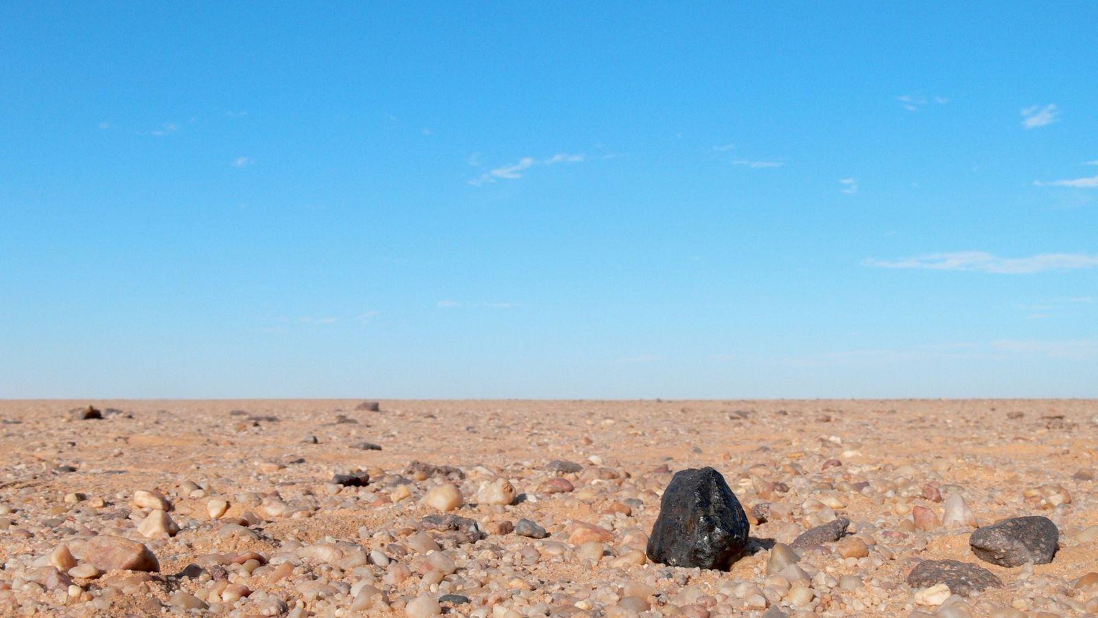 Un fragment noir d'une météorite d'uréilite contraste avec les roches de couleur claire que l'on trouve ...