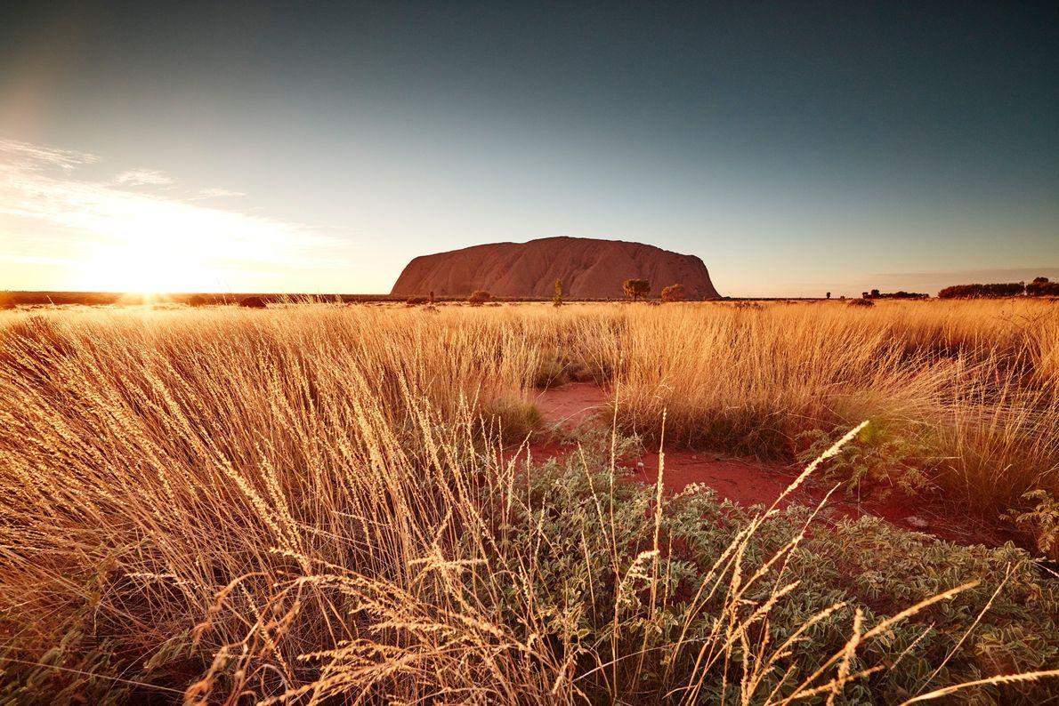 Le parc national d'Uluru-Kata Tjuta, un site classé au patrimoine mondial de l'UNESCO, protège Uluru (le ...