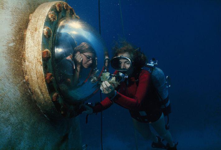 Sylvia Earle montre une algue à un visiteur.