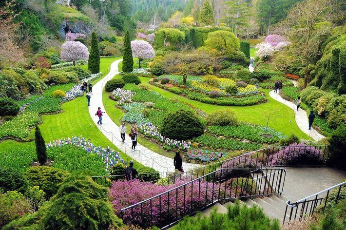 Situé à Victoria en Colombie-Britannique au Cananda. C'est l'endroit le plus important à visiter dans cette ...