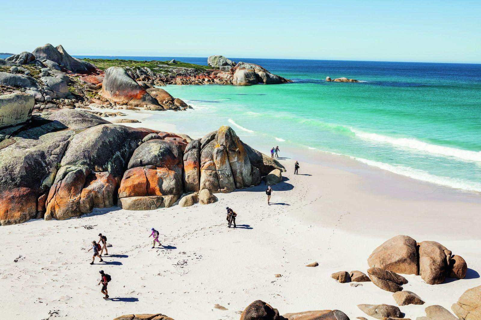 Tasmanie, l'île aux trésors