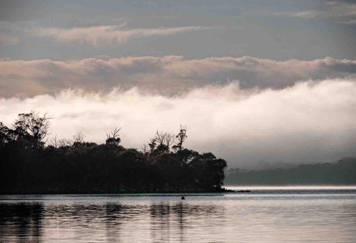 Le brouillard s'installe sur la rivière Tamar