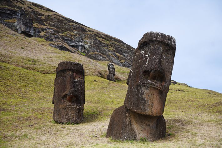 Tous les moai ont été taillés dans la même carrière sur les pentes du volcan Rano ...