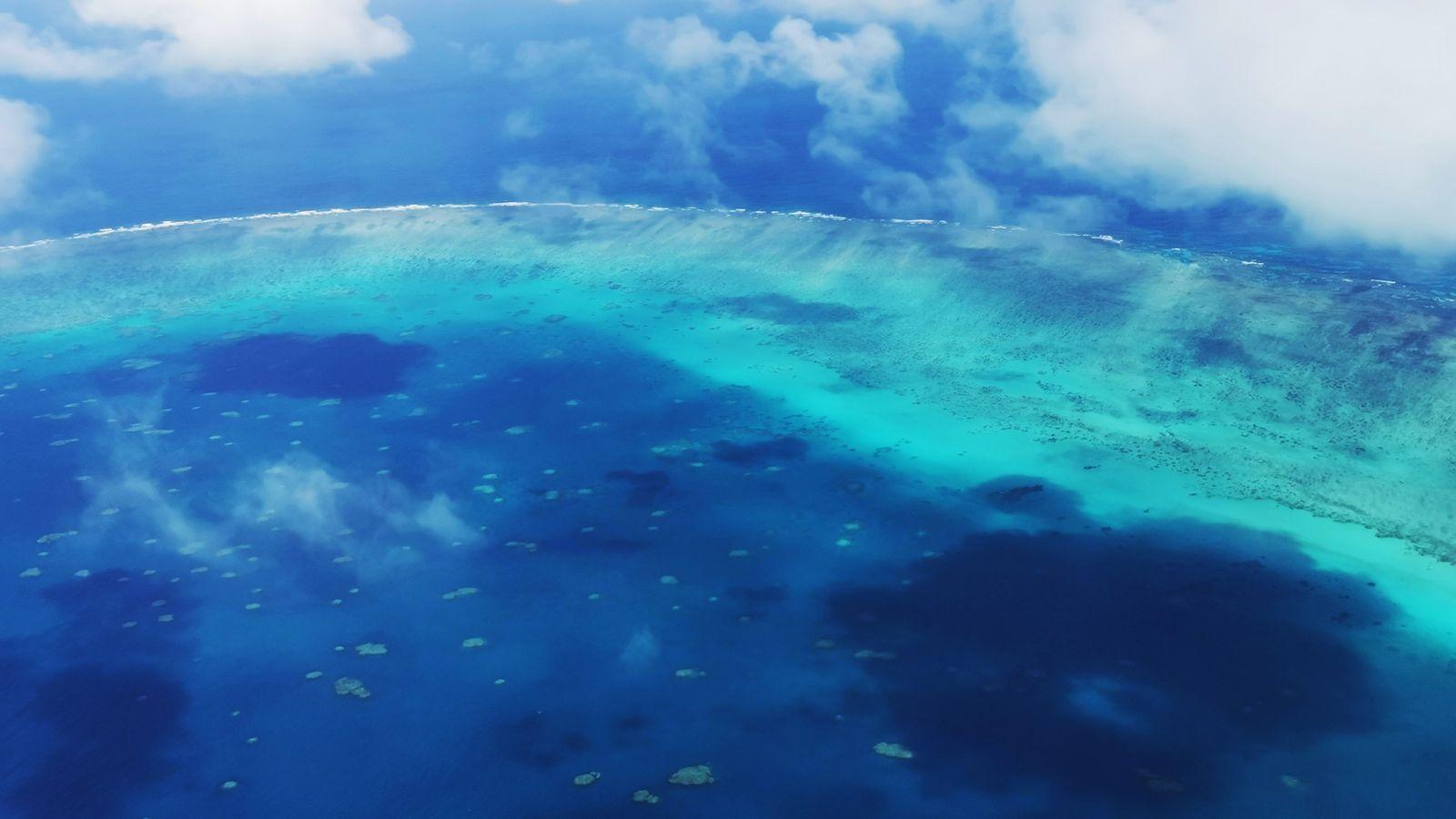 Habitat d'une flore et d'une faune multicolores, la Grande Barrière de corail s'étire sur près de ...