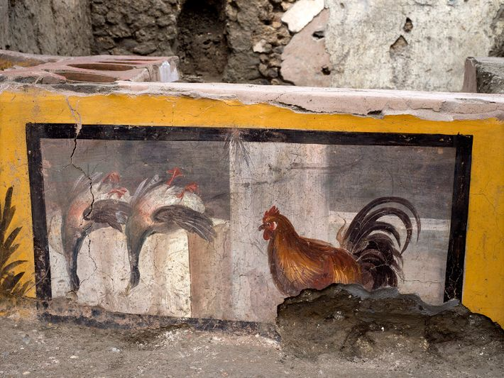 Fresque montrant un coq et deux canards colvert sur le thermopolium