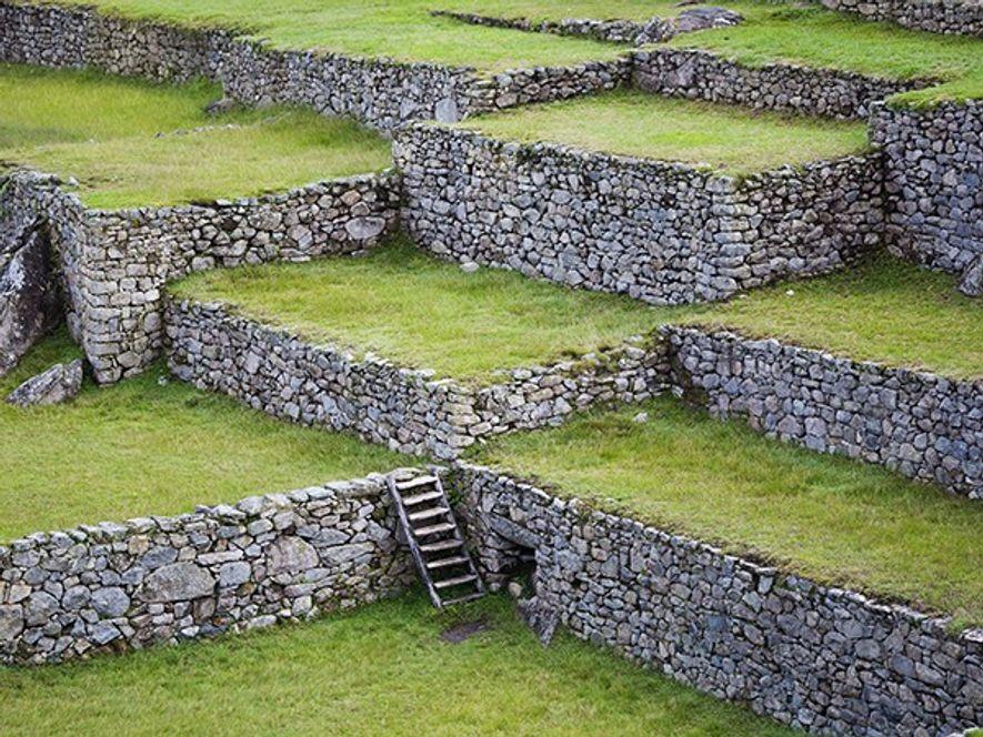 Le Machu Picchu possède plus de 700 terrasses dont le rôle était de préserver la terre ...