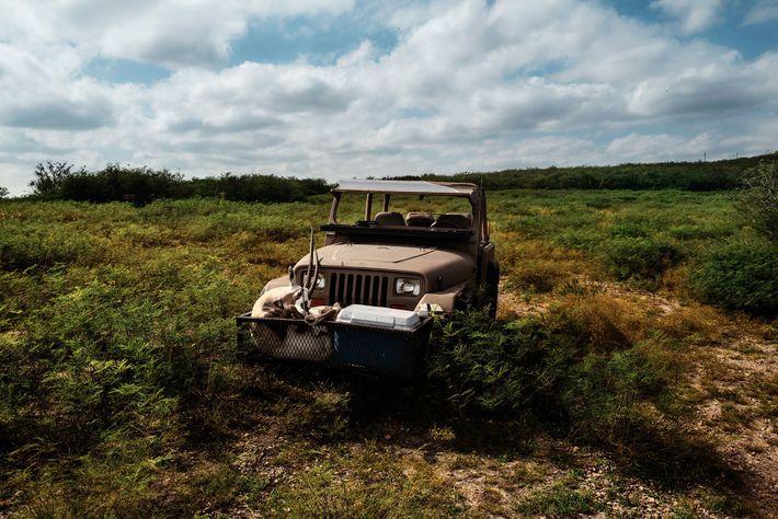 Biologiste des espèces sauvages, Chris Miller a abattu cet oryx d'Arabie mâle au 777 ranch fin 2018 ...