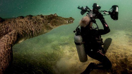 Sous les mers : récit d'une session photo extraordinaire