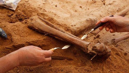 Une tombe issue d'une des mutineries les plus meurtrières de l'histoire