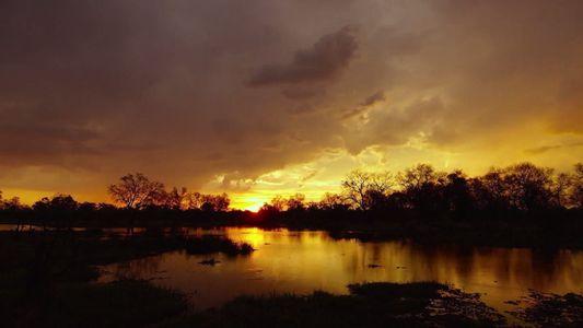 Au cœur de l'Okavango - Bande annonce