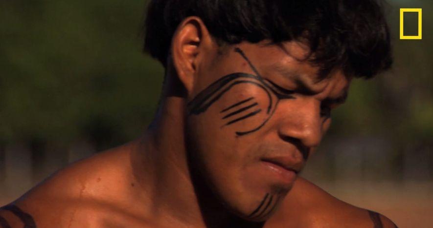 Le parc indigène du Xingu