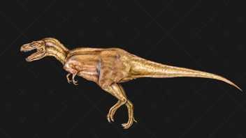 Comprendre : les dinosaures