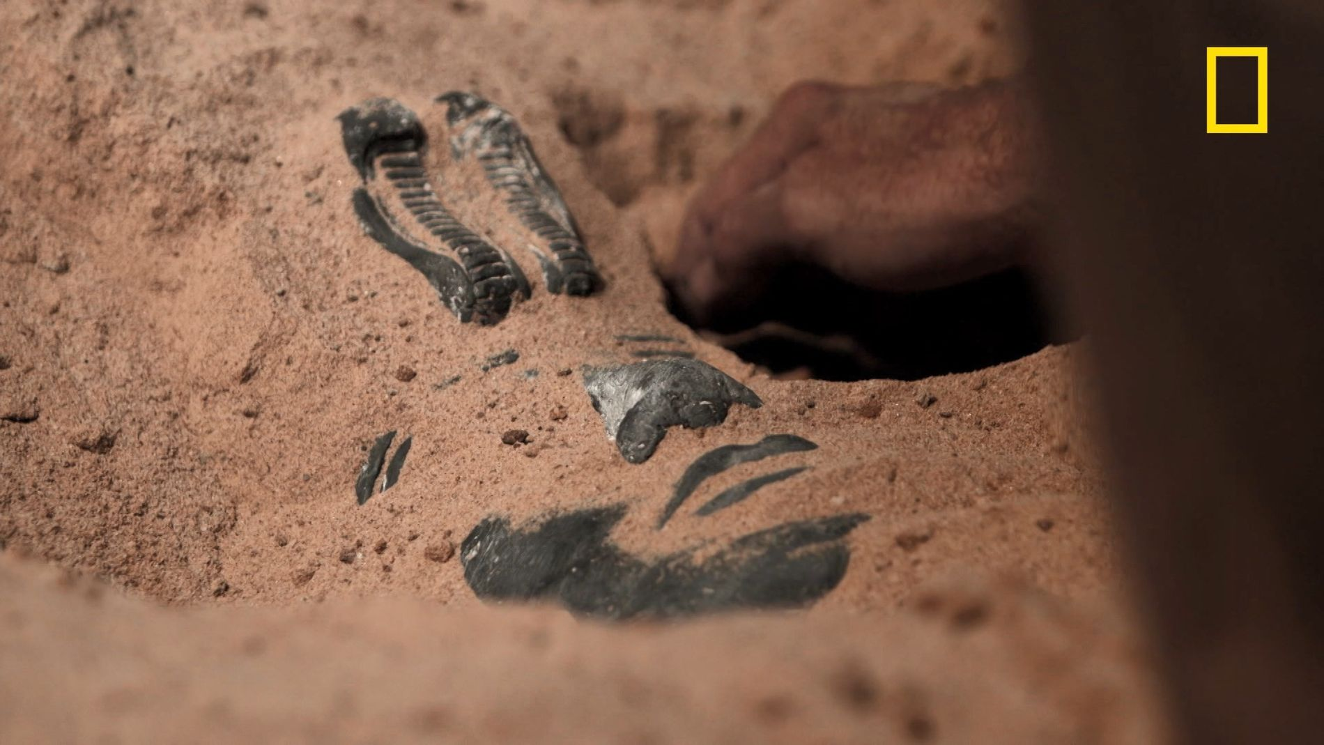 Les Koushites, peuple sous-estimé du Soudan