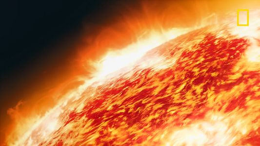 À quoi ressemblerait la vie sur Proxima B ?