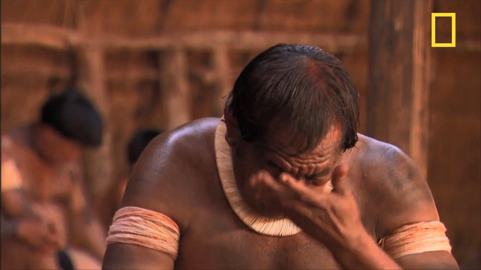La déforestation, ce mal qui ronge l'Amazonie et ses peuples