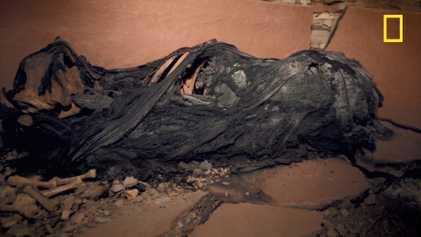 Découverte d'une momie enveloppée dans du tissu noir