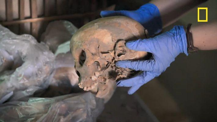 Comment étudier les ossements d'un tombeau comportant 80 squelettes ?