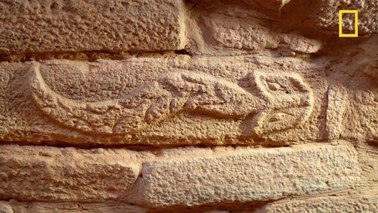Archéologie : les mystérieuses gravures de la cité de Shimao