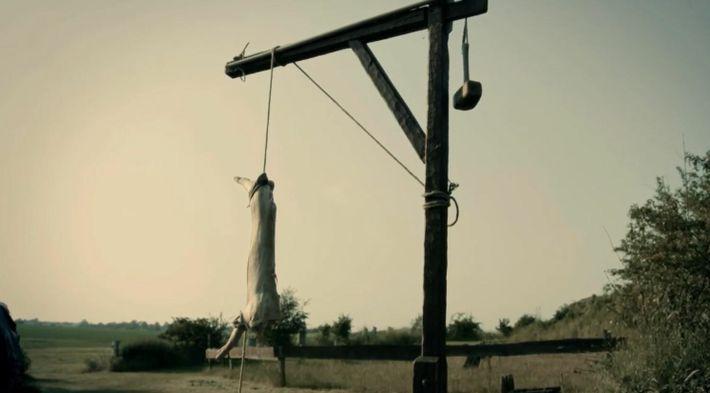 Des scientifiques testent une hache Viking sur une carcasse de porc