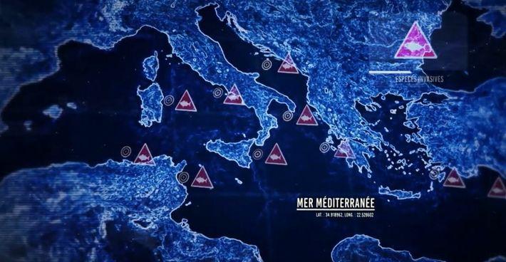 Naissance de zones mortes dans la Méditerranée