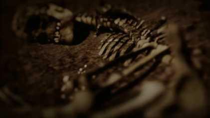 Découverte de la chambre funéraire d'une guerrière Viking
