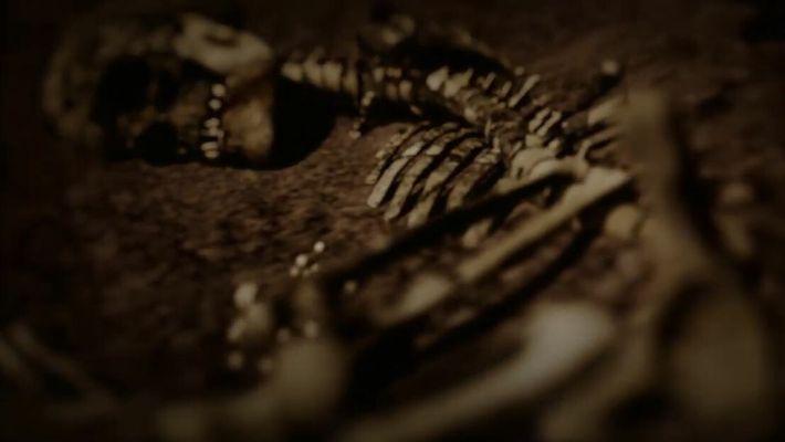 Découverte de la somptueuse chambre funéraire d'une guerrière Viking