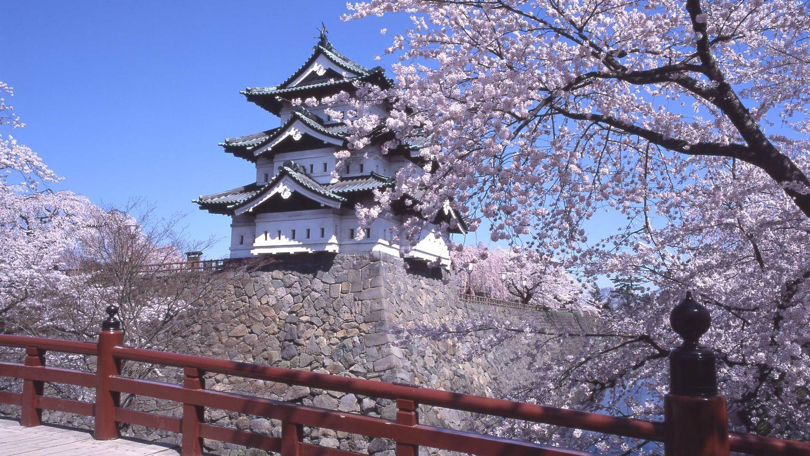 Le parc Hirosaki parsemés de cerisiers, est l'un des paysages emblématiques de la préfecture d'Aomori.