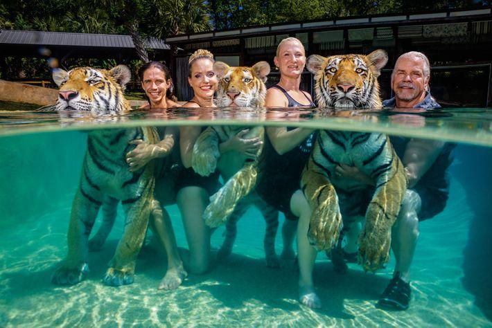 Antle pose aux côtés de ses tigres avec son personnel. De gauche à droite, Kody Antle, ...