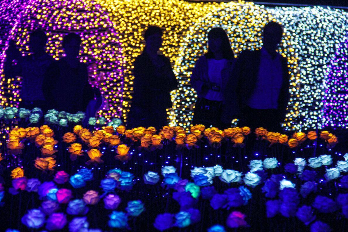 Tonglu, Chine. 5000 lumières en forme de roses éclairent la nuit dans le district de Tonglu.