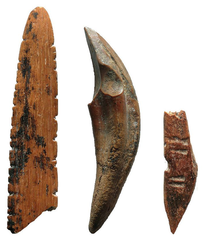 Des outils fabriqués à partir d'os et de dents ont été utilisés pour chasser des singes ...