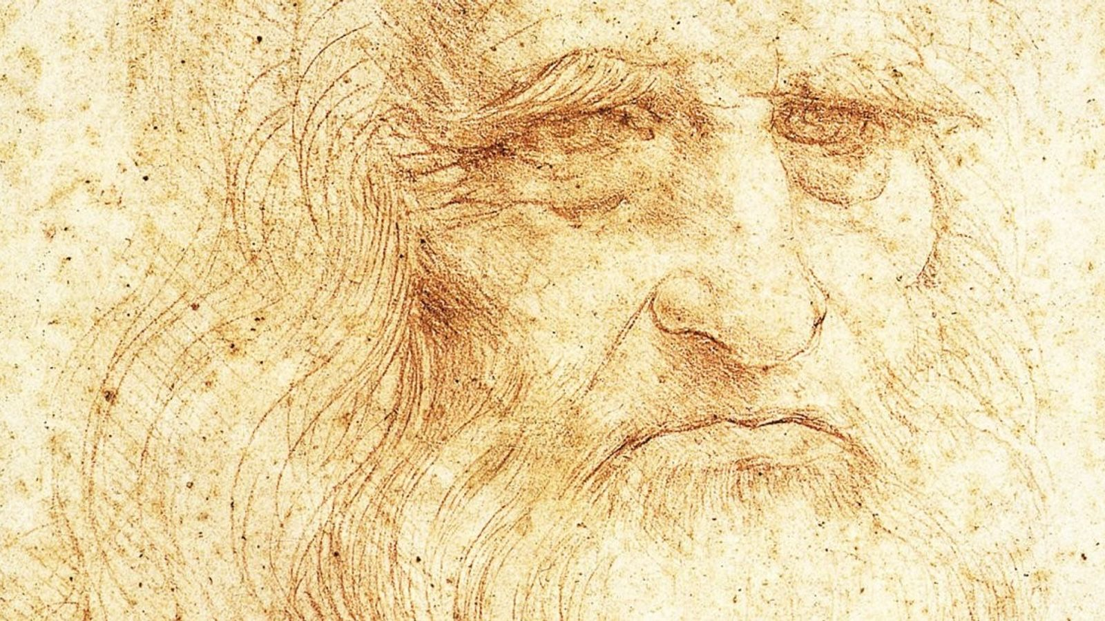 Autoportrait supposé de Léonard de Vinci probablement réalisé en 1510-1515. Ce dessin à la sanguine est ...