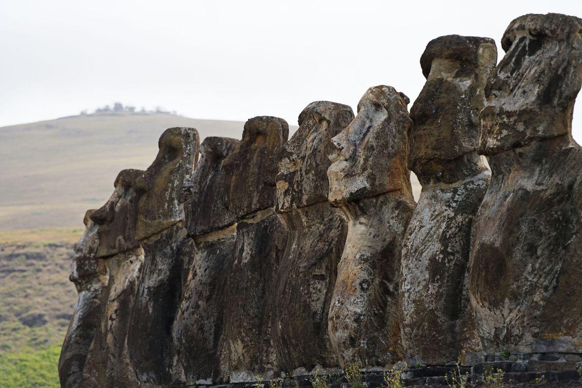 Étape 9 : l'île de Pâques. Les moais de l'île de Pâques sont issus d'une même ...