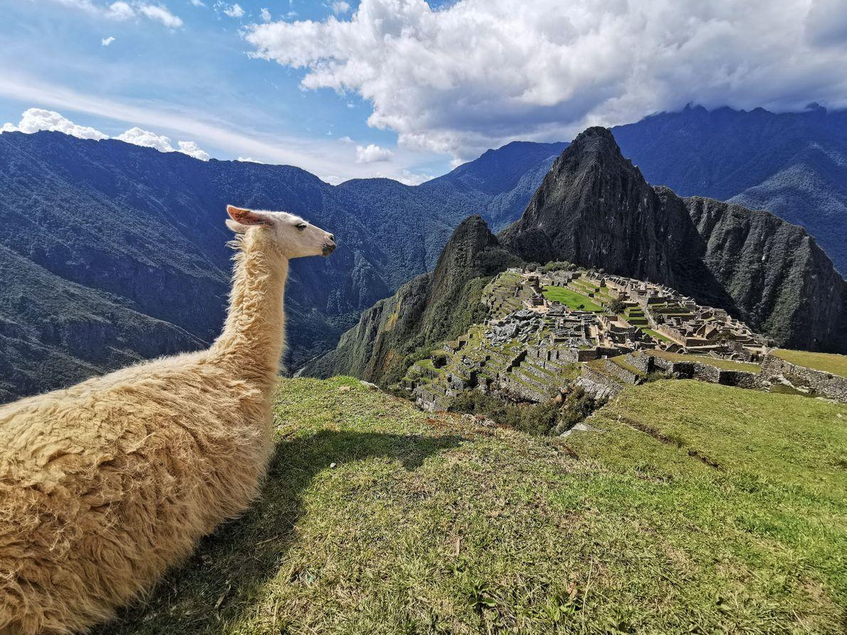 Étape 2 : le Pérou. Construite à 2 430 m d'altitude au 15e siècle et abandonnée ...