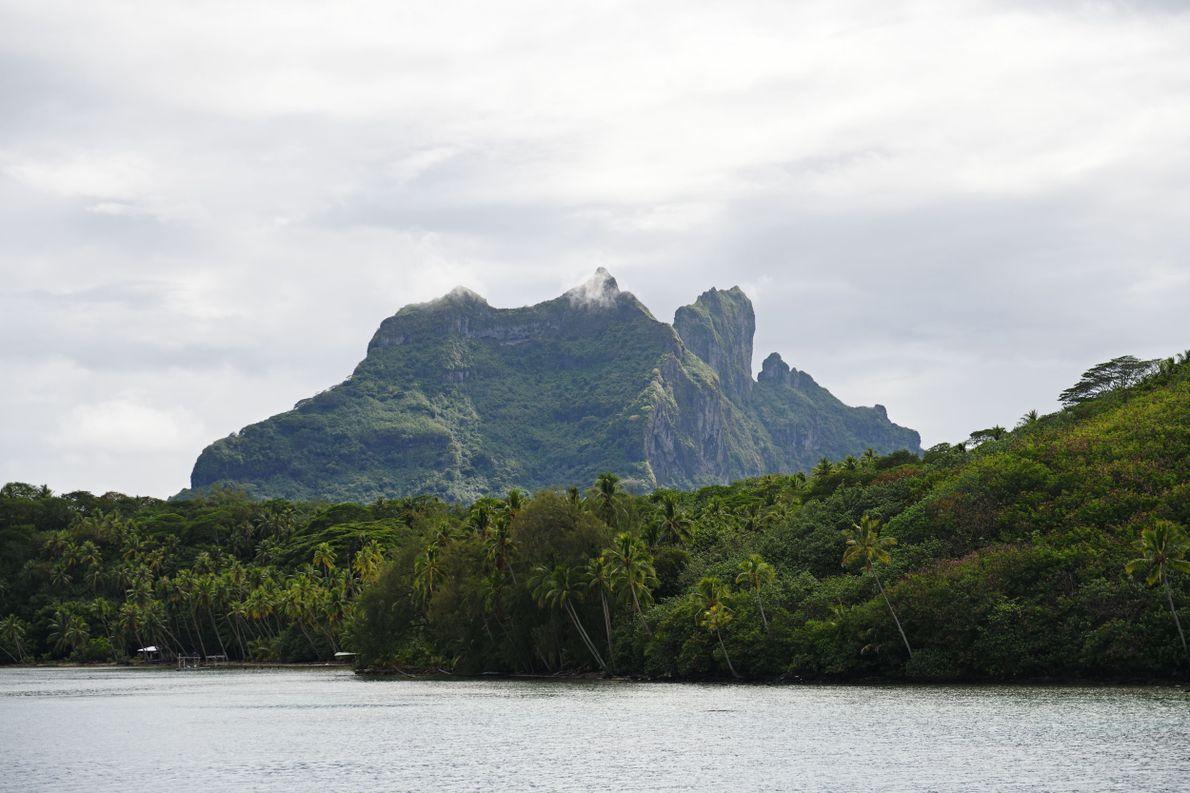 Étape 3 : la Polynésie française. Située à 45 minutes d'avion depuis Papeete et 20 minutes ...