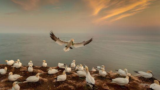 C'est avec un objectif grand angle que le photographe Andy Lubert a pris ce cliché d'un ...