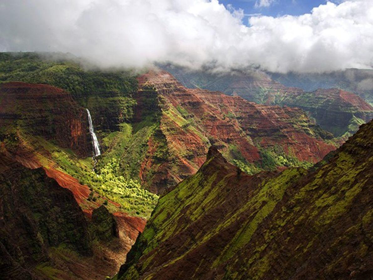Le Grand Canyon du Pacifique, Kauai
